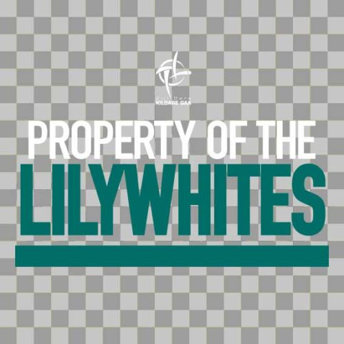 Kildare Wall Vinyl Property of The Lillywhites design